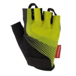 E14BC05W/B - Komputer Echo BC-5 5 funkcji biało-niebieski